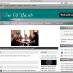 Why WPMU DEV Membership is a SEVERE Business Risk
