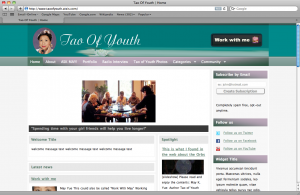 TaoOfYouth.com In WPMU's Scholar Theme